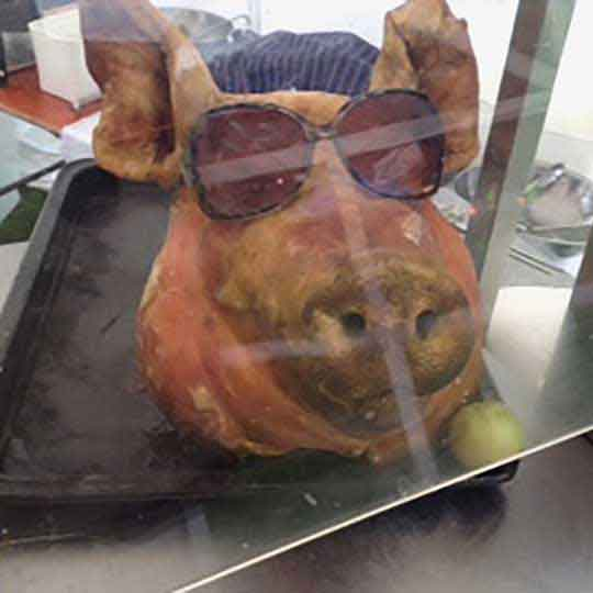 outside catering hog roast with sun glasses plus apple